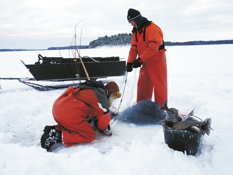 verkkokalastus, talvikalastus, kalaverkko