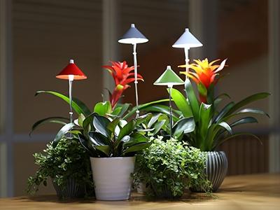 Valaisimet ja lamput