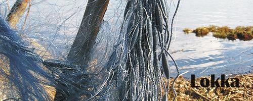 Lokka kalaverkot