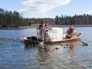 Fiskevårdsryssja 2,0 m
