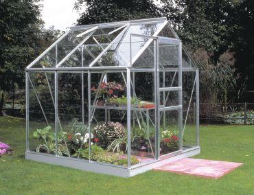 Växthus Halls Popular 3,8 m² glas, aluminium