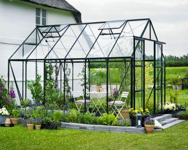 Växthus Halls Magnum 9,9 m² säkerhetsglas, svart färg