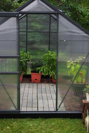 Kasvihuone Halls Popular 6,2 m² kennolevyllä, antrasiitin harmaa väri