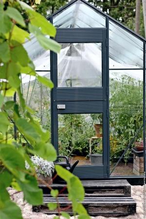 Kasvihuone Juliana Junior 10,2 m² lasilla, antrasiitin harmaa