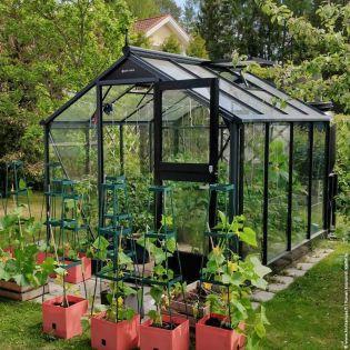 Växthus Juliana Compact 6,6 m² säkerhetsglas, antrasit/svart stomme