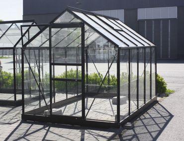 Växthus Halls Popular 6,2 m² glas, svart färg
