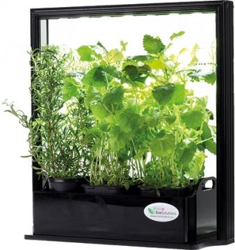 VENSO Eco Herb yrttitarha LED