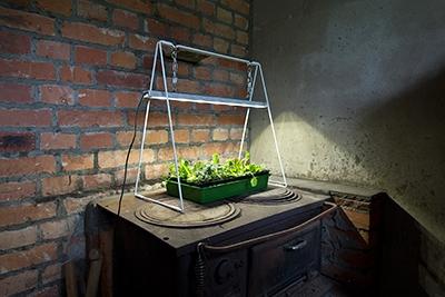 VENSO Growlight Duo LED jalustalla