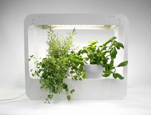 Home Garden pöytäpuutarha kasvivalolla